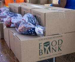 A look inside the Food Bank box.