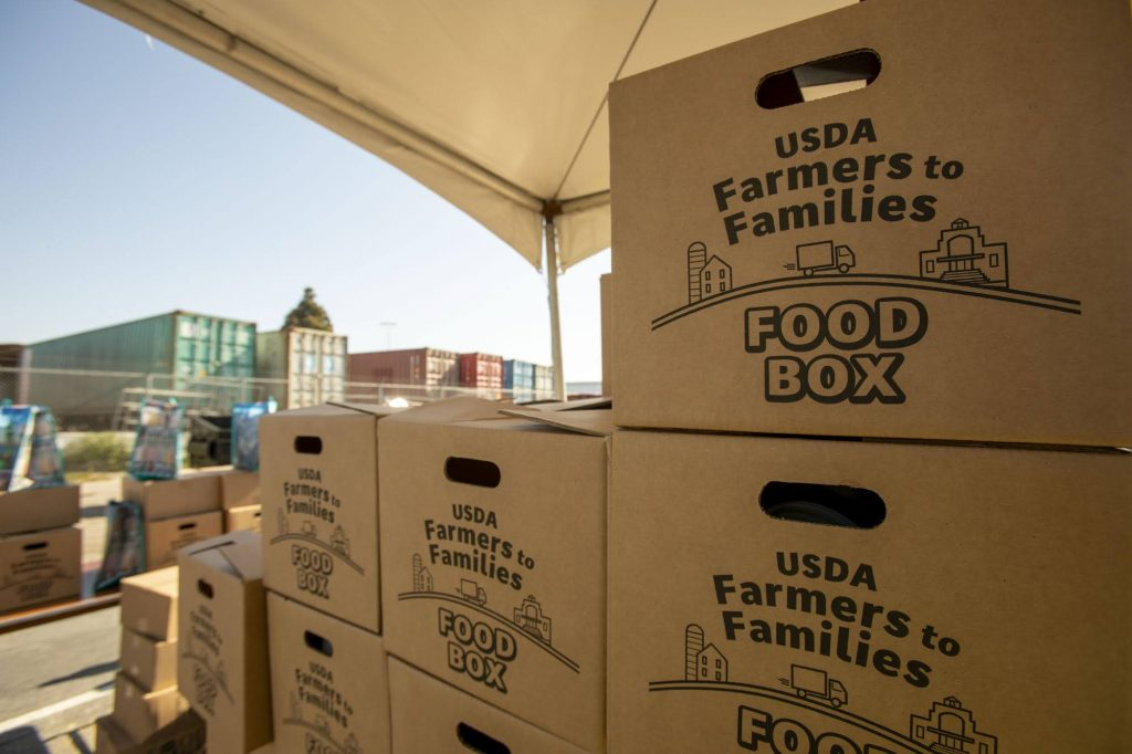 A close up of USDA Farmers to Families Food Boxes at a drive-through food distribution hosted by the LA Regional Food Bank.