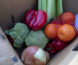 fresh produce at the Church of the Redeemer