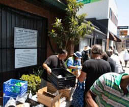 A volunteer organizing food resources at a distribution hosted by a LA Regional Food Bank Partner Agency in West Los Angeles.