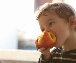 boy eating apple homepage