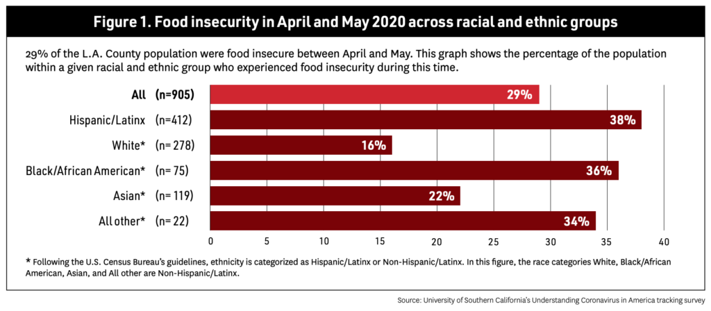 USF Food insecurity Chart across racial and ethnic groups