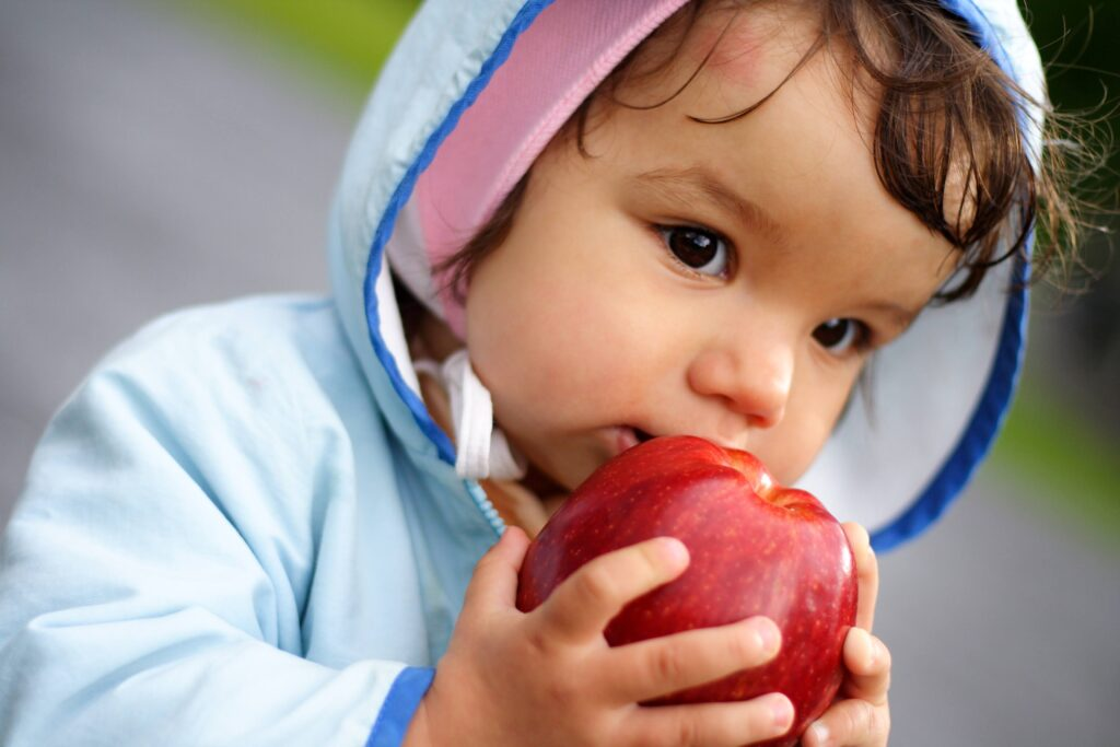 A child wearing a blue hoodie is holding a red apple to its face.